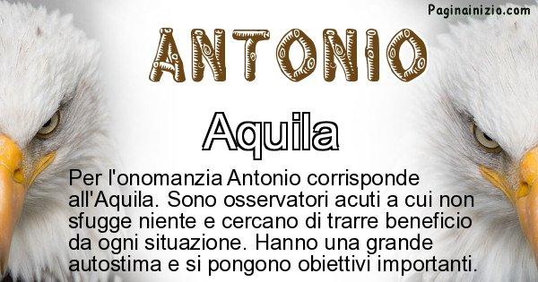 Antonio - Animale associato al nome Antonio