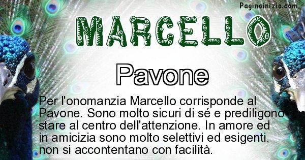 Marcello - Animale associato al nome Marcello