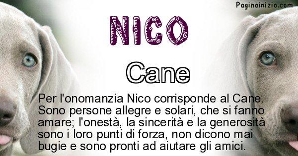 Nico - Animale associato al nome Nico