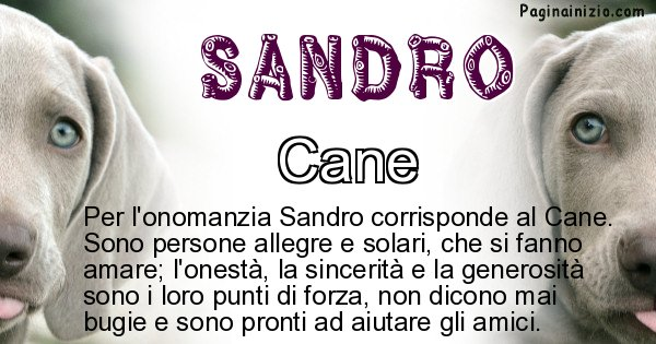 Sandro - Animale associato al nome Sandro