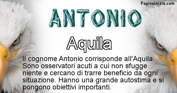 Antonio - Scopri l'animale affine al cognome Antonio