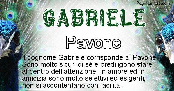 Gabriele - Scopri l'animale affine al cognome Gabriele