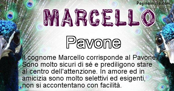 Marcello - Scopri l'animale affine al cognome Marcello
