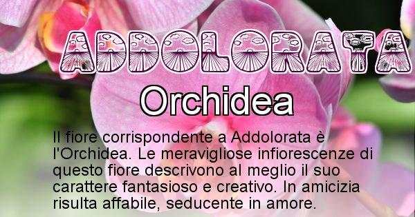 Addolorata - Fiore associato al Nome Addolorata