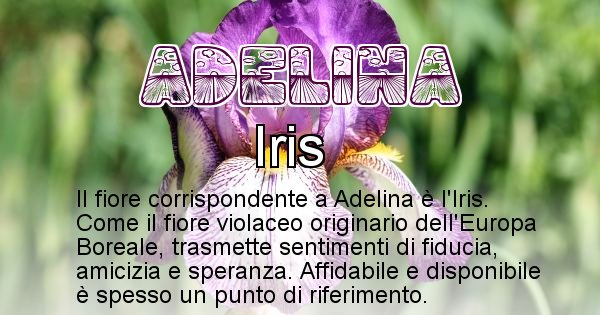 Adelina - Fiore associato al Nome Adelina
