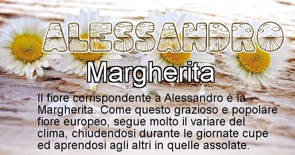 Alessandro - Fiore associato al Nome Alessandro