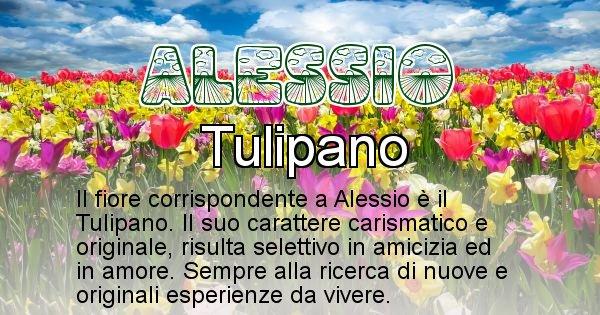 Alessio - Fiore associato al Nome Alessio