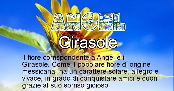 Angel - Fiore associato al Nome Angel