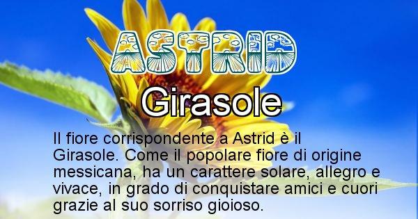 Astrid - Fiore associato al Nome Astrid
