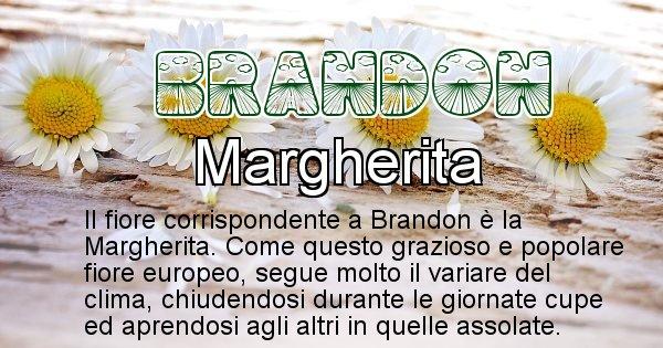 Brandon - Fiore associato al Nome Brandon