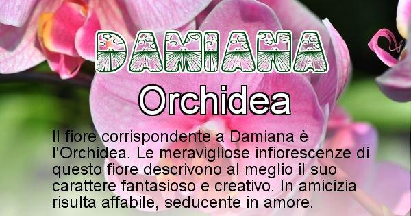 Damiana - Fiore associato al Nome Damiana
