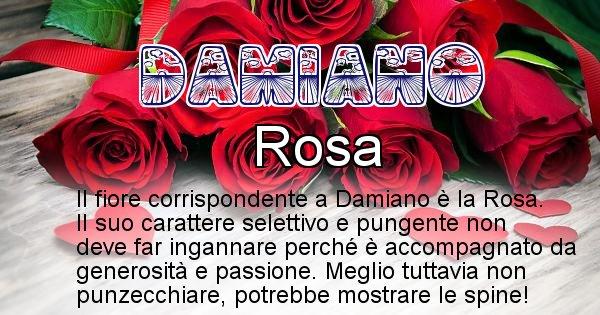 Damiano - Fiore associato al Nome Damiano