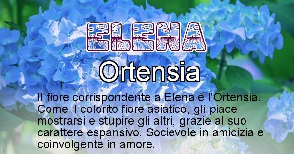 Elena - Fiore associato al Nome Elena