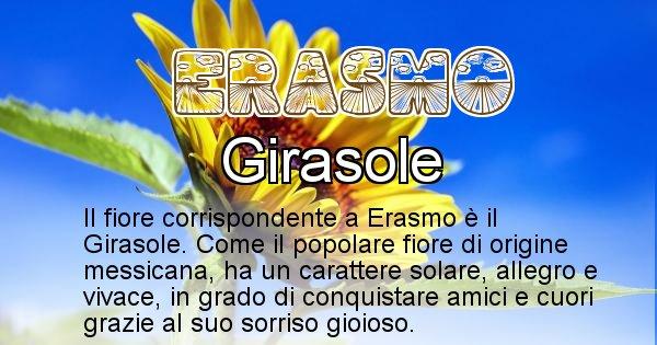 Erasmo - Fiore associato al Nome Erasmo