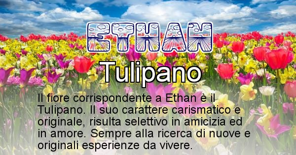Ethan - Fiore associato al Nome Ethan