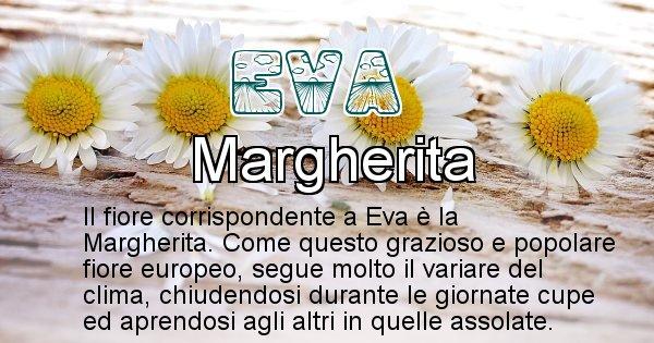 Eva - Fiore associato al Nome Eva