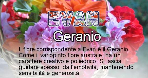 Evan - Fiore associato al Nome Evan