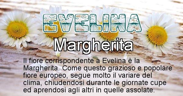 Evelina - Fiore associato al Nome Evelina