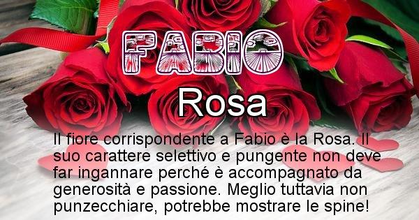 Fabio - Fiore associato al Nome Fabio