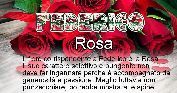 Federico - Fiore associato al Nome Federico