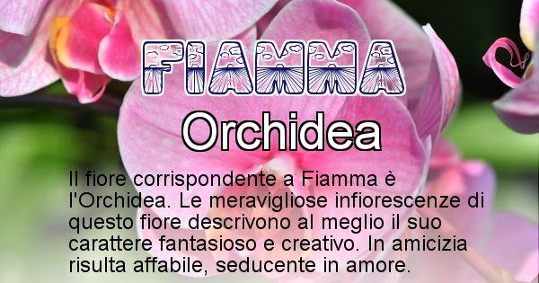 Fiamma - Fiore associato al Nome Fiamma