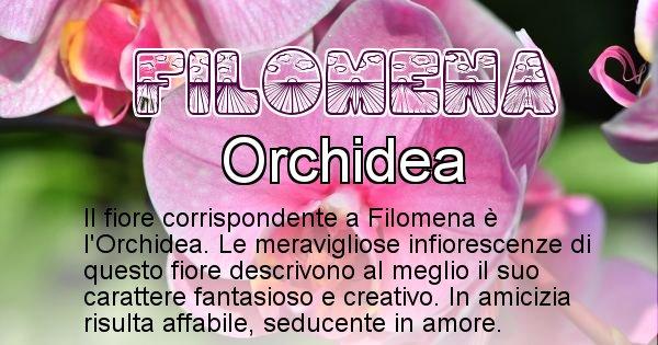 Filomena - Fiore associato al Nome Filomena