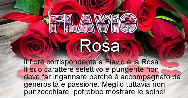 Flavio - Fiore associato al Nome Flavio