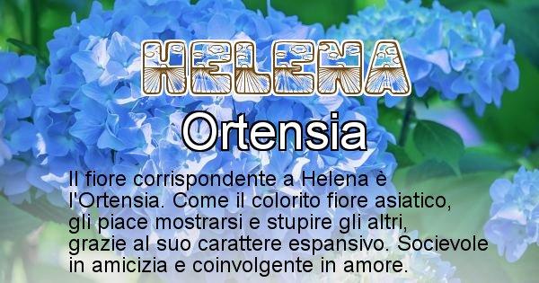 Helena - Fiore associato al Nome Helena