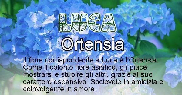 Luca - Fiore associato al Nome Luca