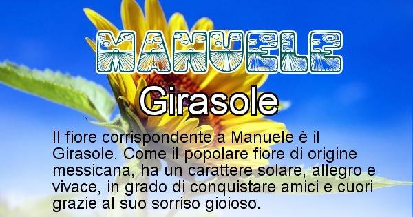 Manuele - Fiore associato al Nome Manuele