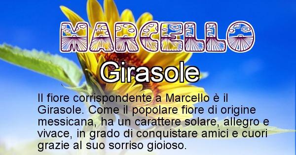 Marcello - Fiore associato al Nome Marcello