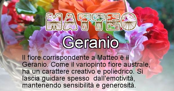 Matteo - Fiore associato al Nome Matteo