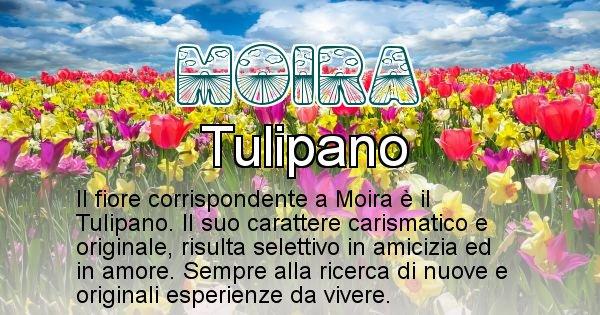 Moira - Fiore associato al Nome Moira