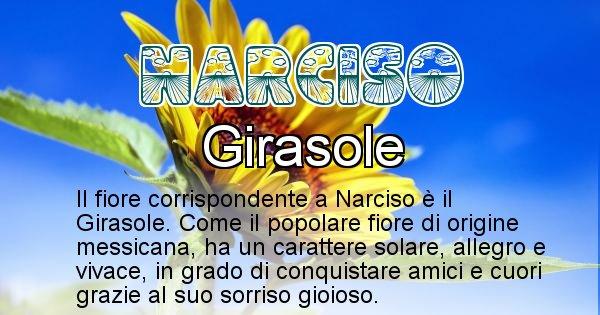 Narciso - Fiore associato al Nome Narciso