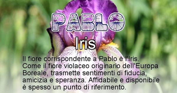 Pablo - Fiore associato al Nome Pablo