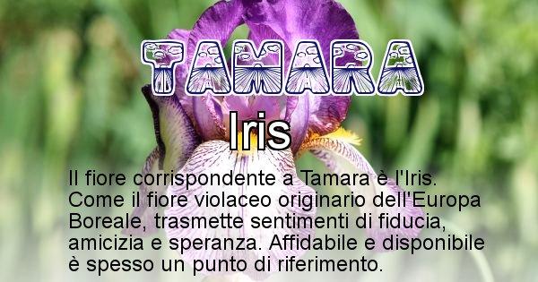 Tamara - Fiore associato al Nome Tamara