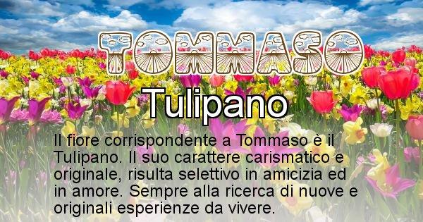 Tommaso - Fiore associato al Nome Tommaso