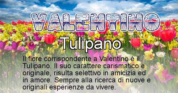 Valentino - Fiore associato al Nome Valentino