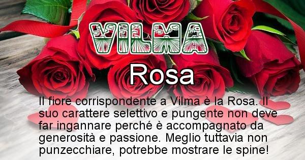 Vilma - Fiore associato al Nome Vilma