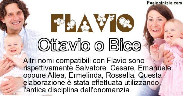 Flavio - Nome ideale per il figlio di Flavio