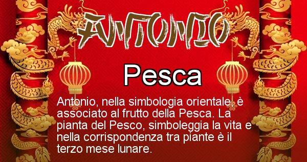 Antonio - Significato orientale del cognome Antonio