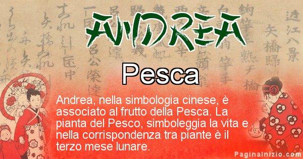Andrea - Significato del nome in Cinese Andrea