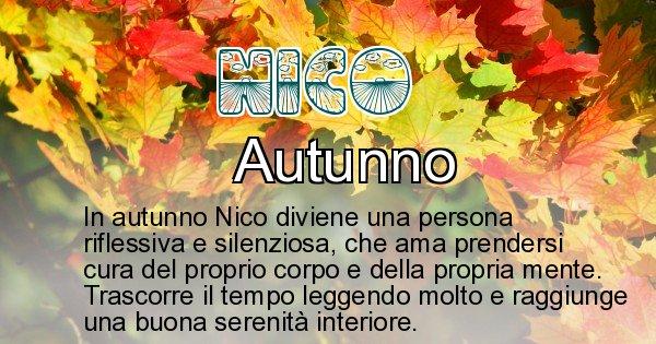 Nico - Stagione associata al nome Nico